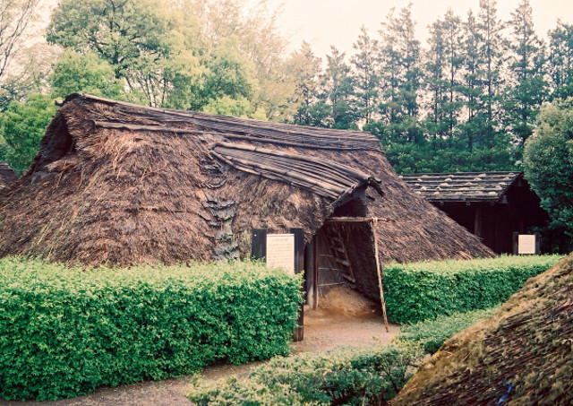 米作りの文化を確立した弥生時代
